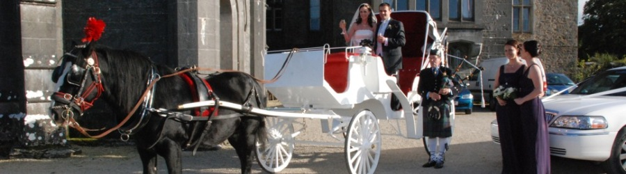 Horse & Carriage – Wedding